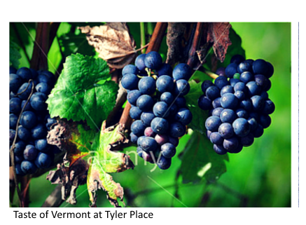Taste of Vermont at Tyler Place as seen in Traveler's USA Notebook